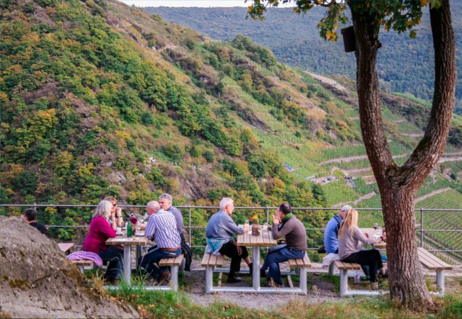 Dining in the vineyards of Ahr | Julia Sergeeva / Shutterstock.com
