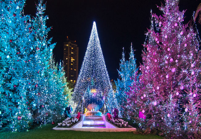 Christmas trees aglow in Canne's old city | Shutterstock