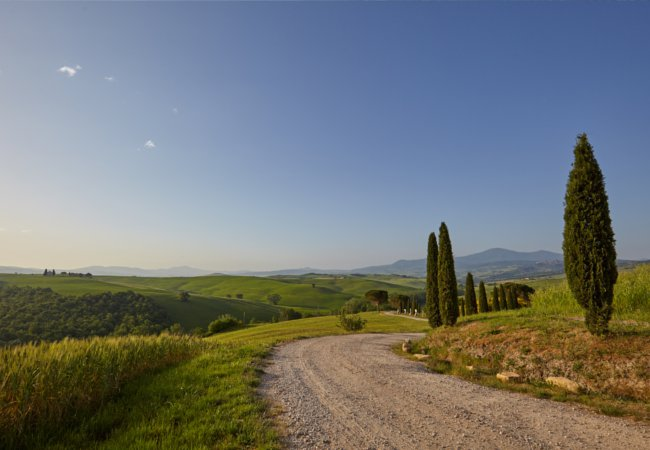 The Strada Statale of Tuscany | Zoom Team/Shutterstock