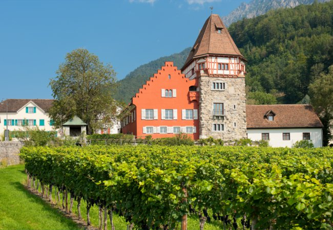 The vineyards of Vaduz | SergiyN/Shutterstock